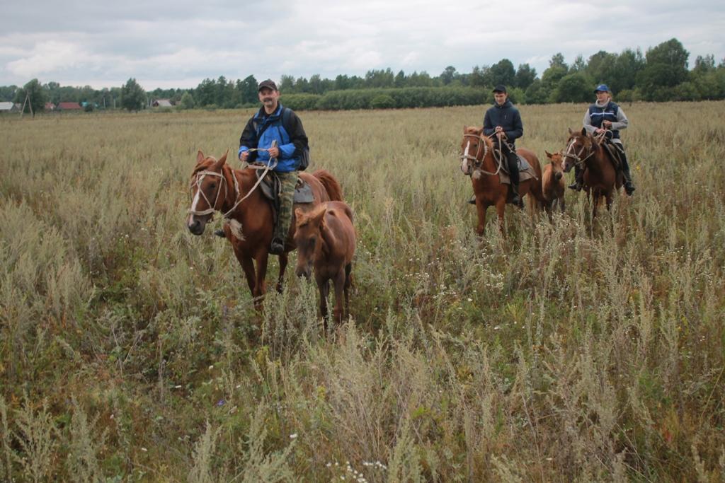 Семейный отдых летом - конно-верховой маршрут