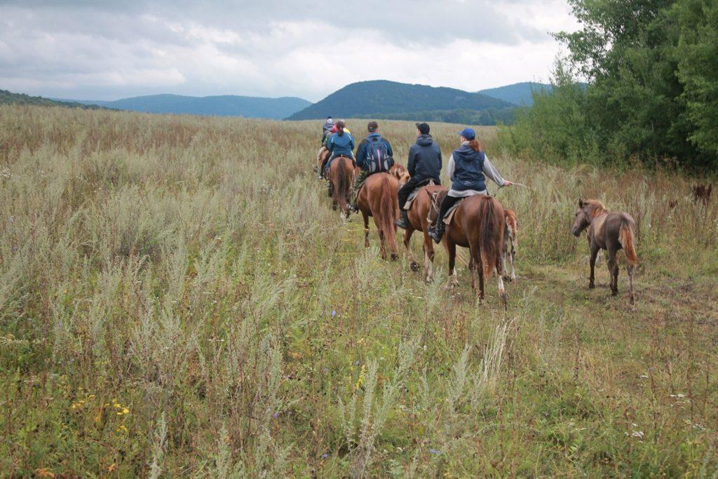 конный туристический маршрут