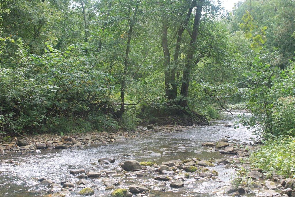 Речка Миндим