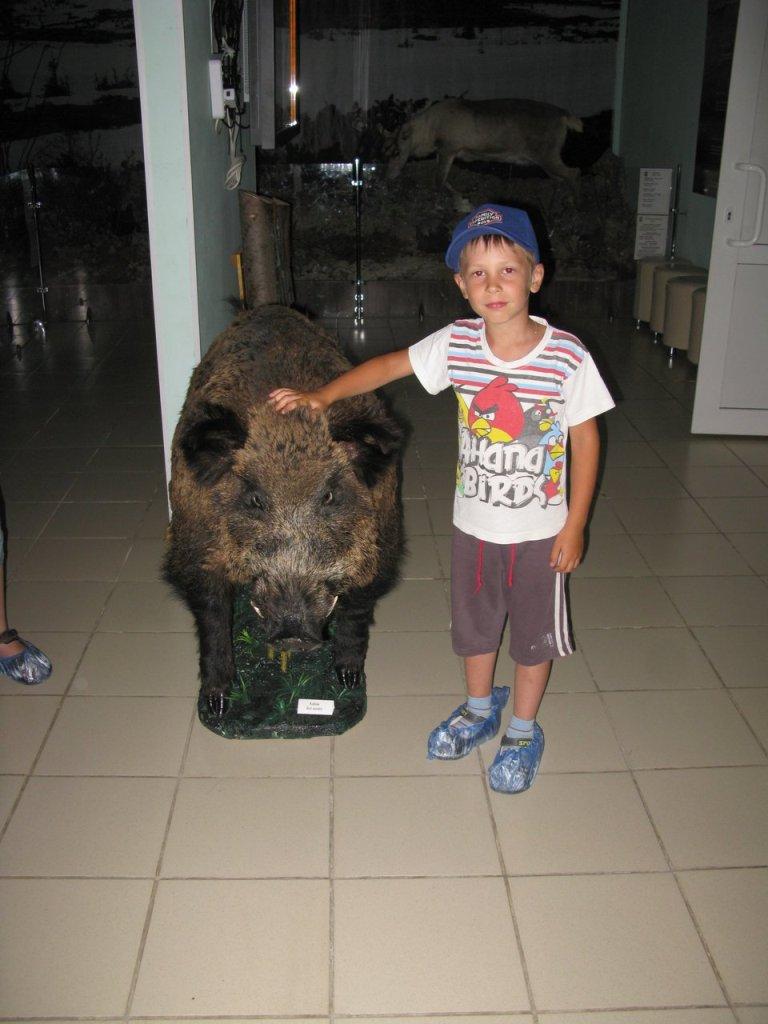Вова в музее с кабаном