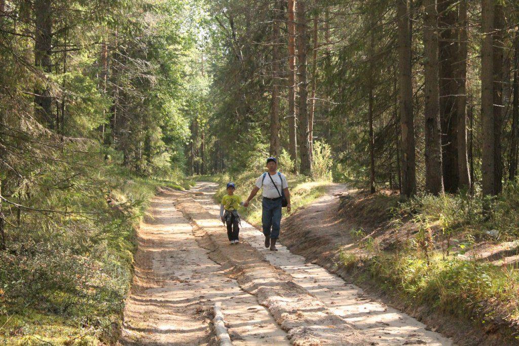 По дороге на Полюд