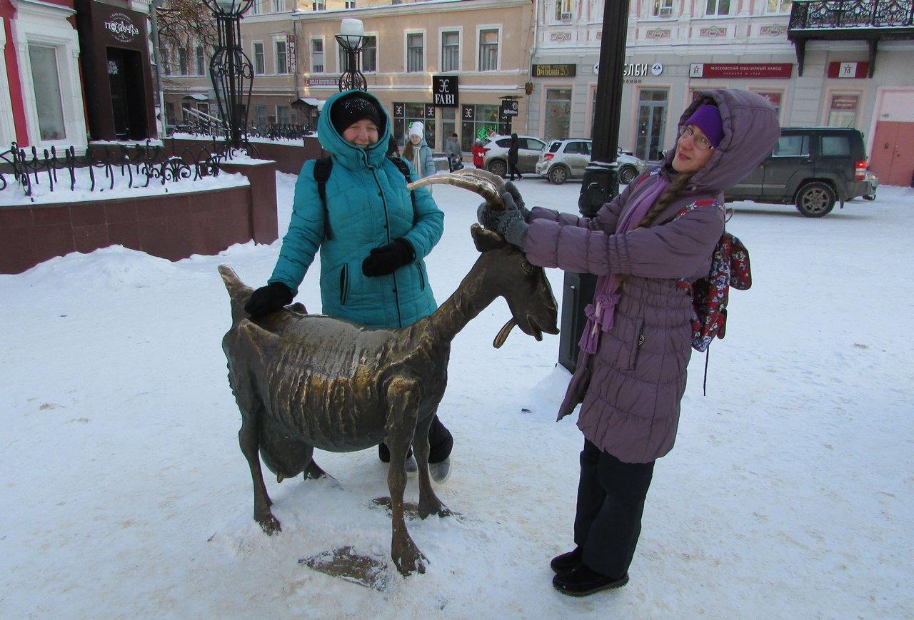 Коза на Покровской
