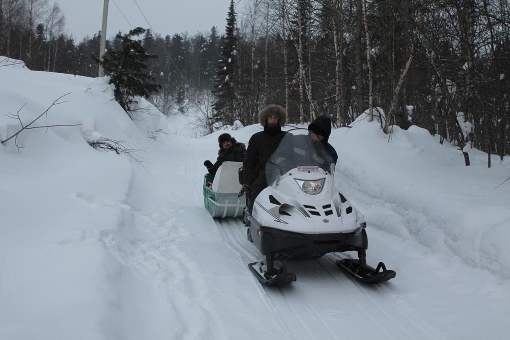 Снегоход с санями