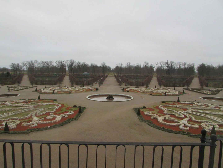Вид на зимний парк