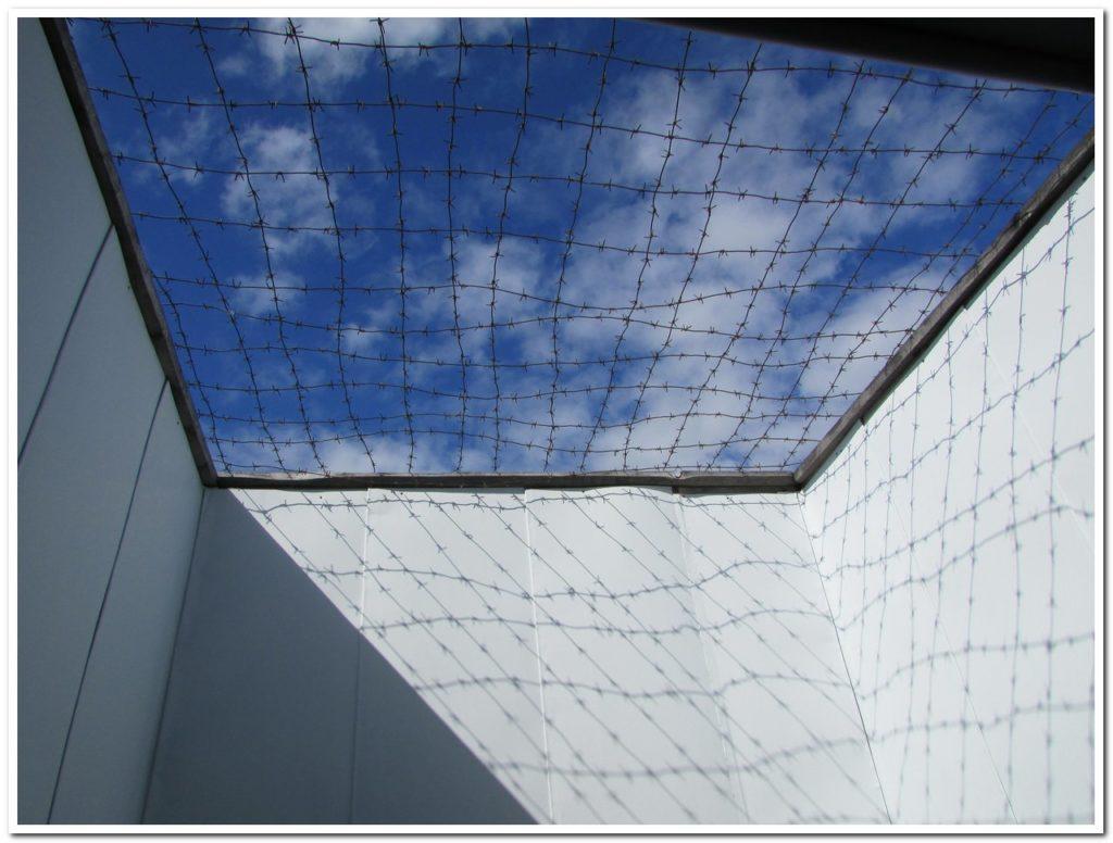 Небо в клеточку