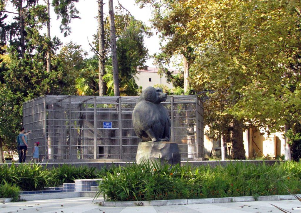 Памятник павиану Муррею