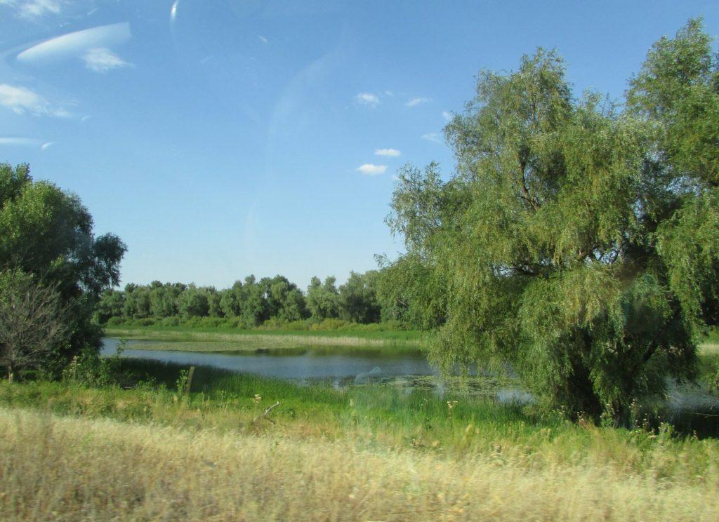 Зеленые берега Урала