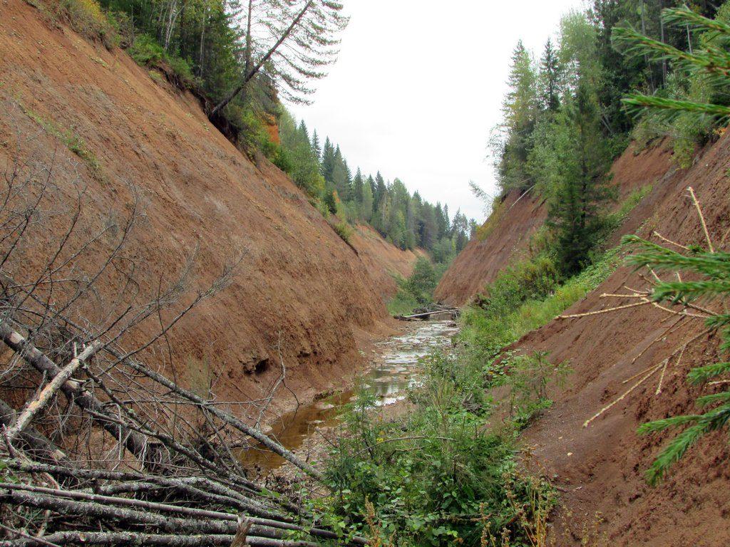 Вниз по течению Копань тянется больше километра