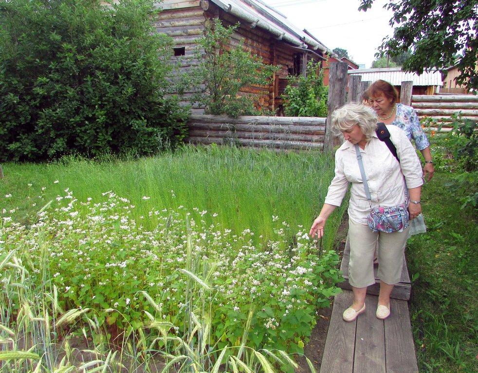 На огороде усадьбы