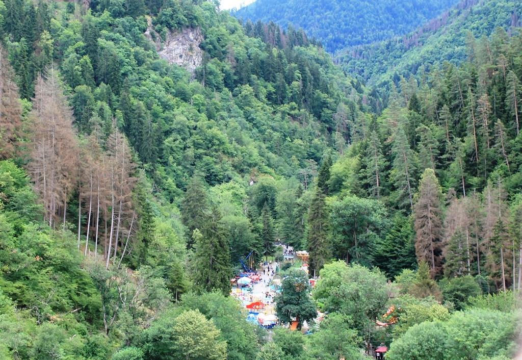 Вид с горы на парк Боржоми