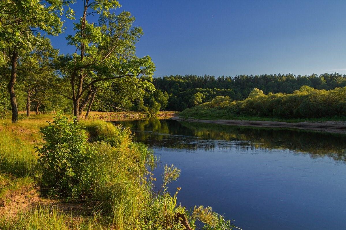 Загородный отдых в Борисове